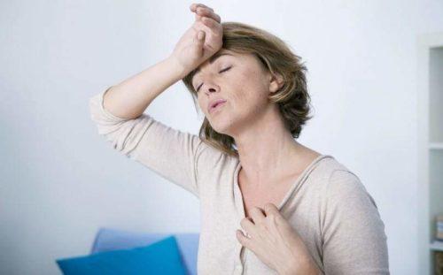 Menopausa: tratamentos naturais que podem te ajudar